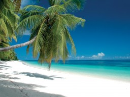 Fantastic sandy beaches - Relax on perfect white sandy beaches and enjoy the tranquility.