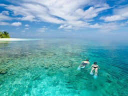 Beautiful house reef - The reef around the island offers ideal diving and snorkeling possibilities.