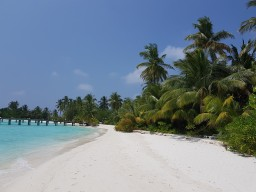Safari Island - Beach view - Beautiful beach sections for relaxing