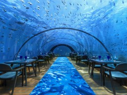 5.8 - Experience a really special dinner at the under water restaurant 5.8.