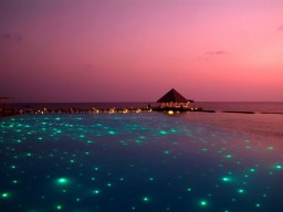 Evening romance - Shining lights offering every evening a beautiful view of the pool area.