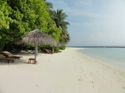 Beautiful setting - Experience on one of the most beautiful islands of the Maldives absolute dream holidays.