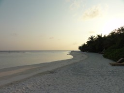 Idyllic paradise island - Relax with a cozy walk around the island or enjoy the absolute tranquility of the island.