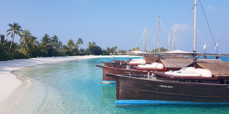 Safari Island - Dhoni boats - The special offered day excursions are available for all guest (for free).