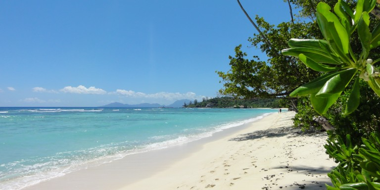 Silhouette Island - Gorgeous beach on Silhouette Island.